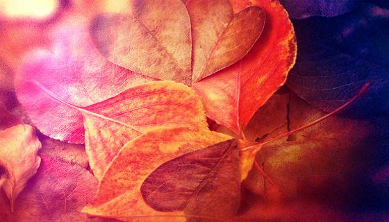 3 sposoby na przyjemne rozgrzanie jesiennych wieczorów